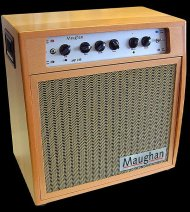 Amp with hardwood cabinet